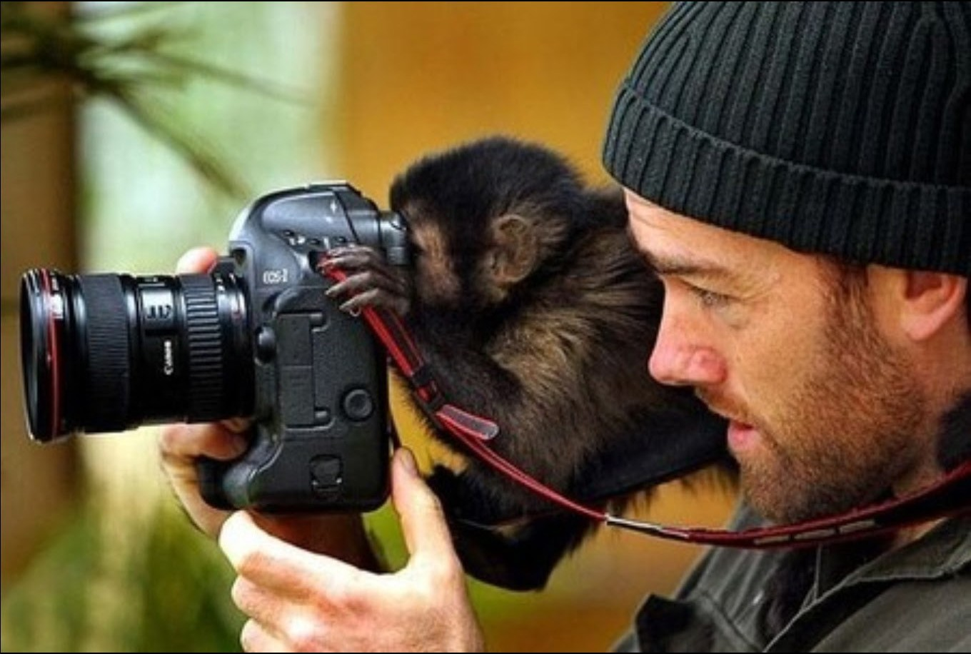 Funny Animals With Cameras_87