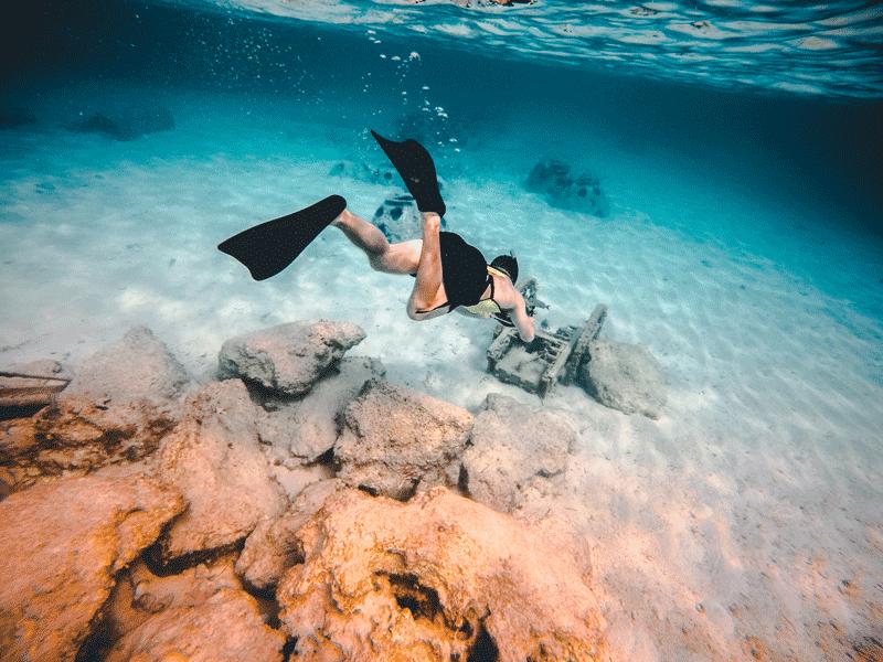 8 conseils pour prendre de belles photos sous-marines