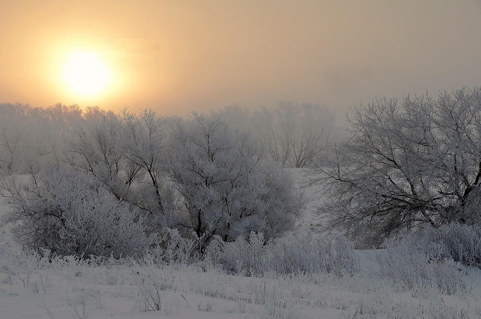 Winter_wonderland_jordan_wilmsjpg