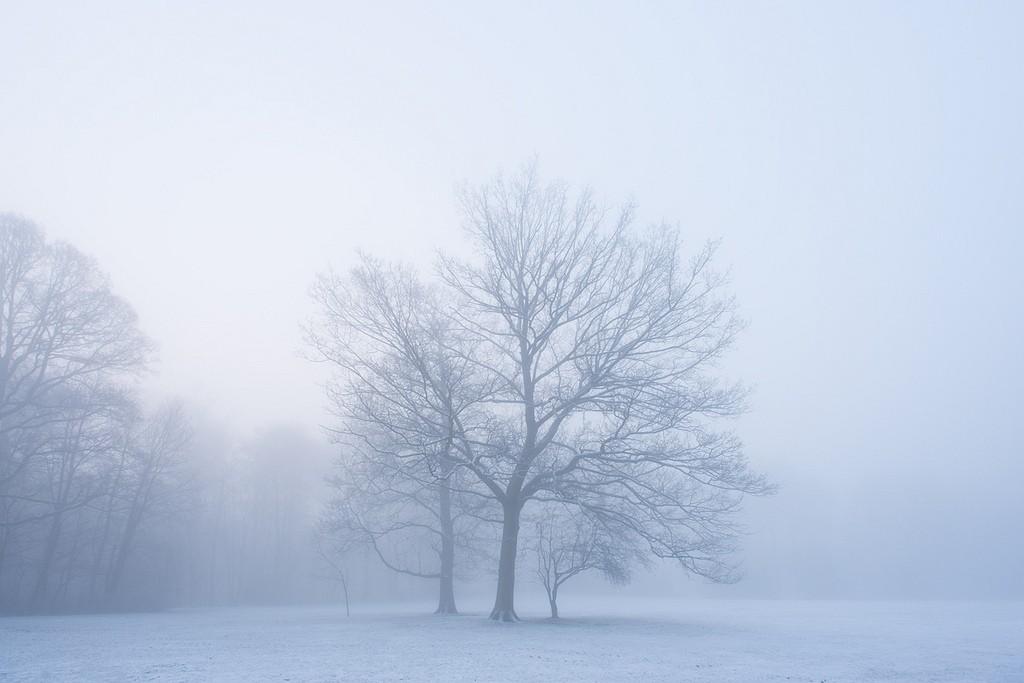 10 conseils pour améliorer vos photos d'hiver (I)