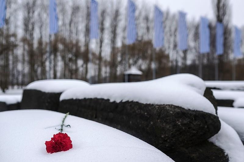 Clavel rojo sobre el Memorial de las Naciones. © José Luis Valdivia.