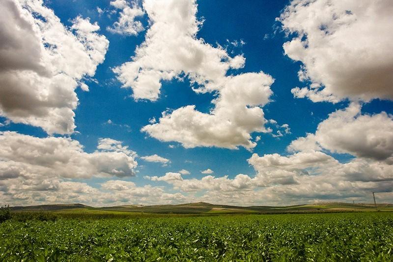 Dónde colocar el horizonte: en un extremo de la foto