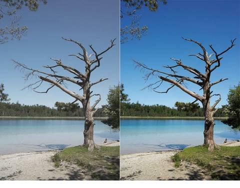 Un filtro UV es un accesorio imprescindible a la hora de hacer fotografía de naturaleza.