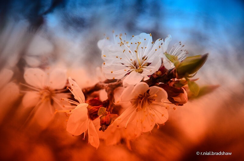 filtros-fotograficos-correccion-color