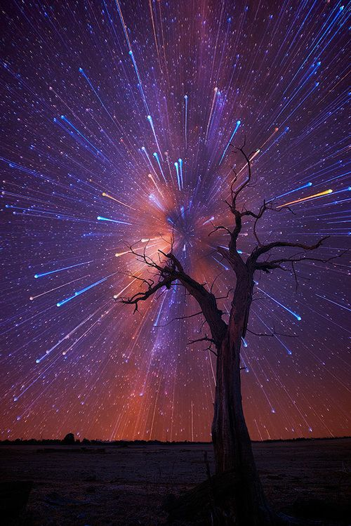 Startrails, de Lincoln Harrison