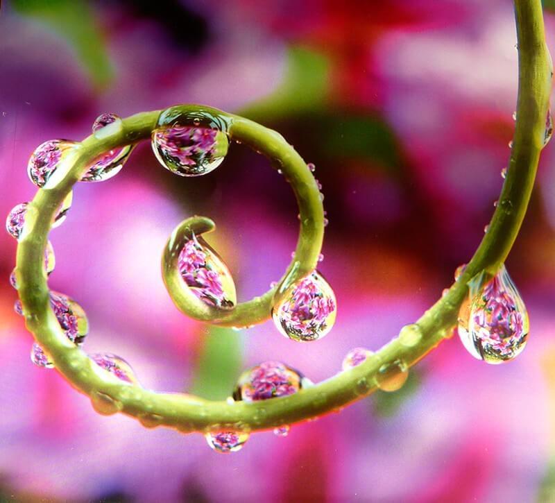 Fotos de gotas de agua. Autor: OC Always