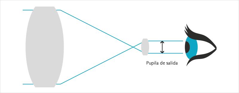 Cómo elegir unos prismáticos: pupila de salida