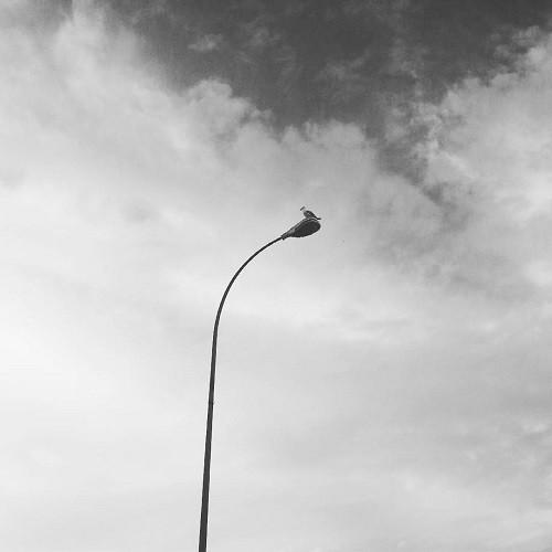 Farola en blanco y negro
