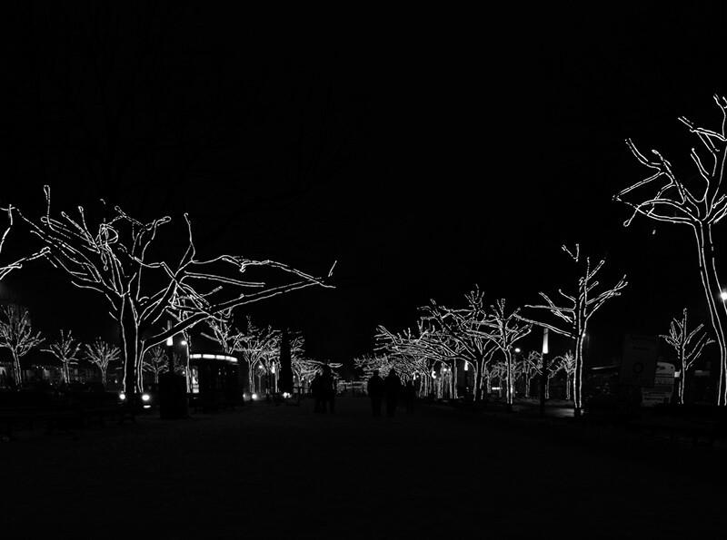 El blanco y negro en tus fotos de Navidad - Tobias Abel