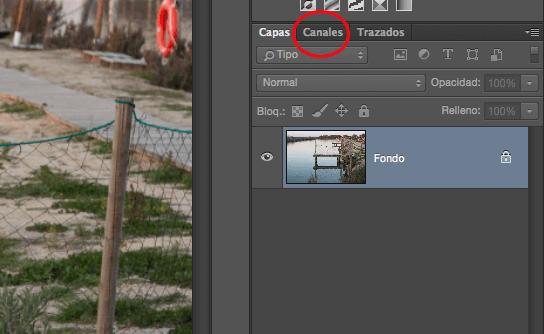 5 técnicas de enfoque con Photoshop para resaltar tus fotos: pestaña canal