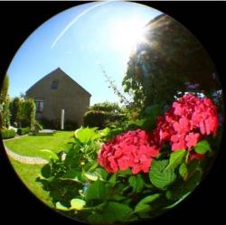 14 idées originales pour prendre des photos chez soi : fish eye