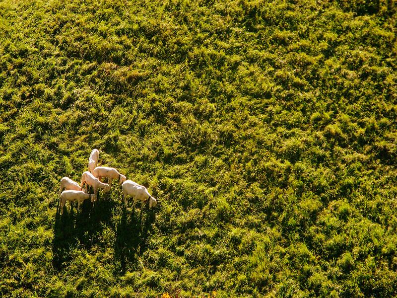 La photographie aérienne : qu'est-ce que c'est ? Quelques conseils pour se lancer - Photo: flohrflohr.