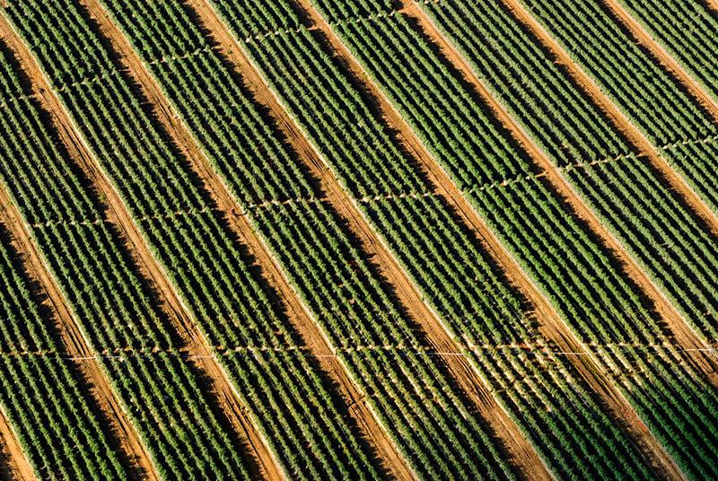 La photographie aérienne : qu'est-ce que c'est ? Quelques conseils pour se lancer - Photo: Matt Benson.