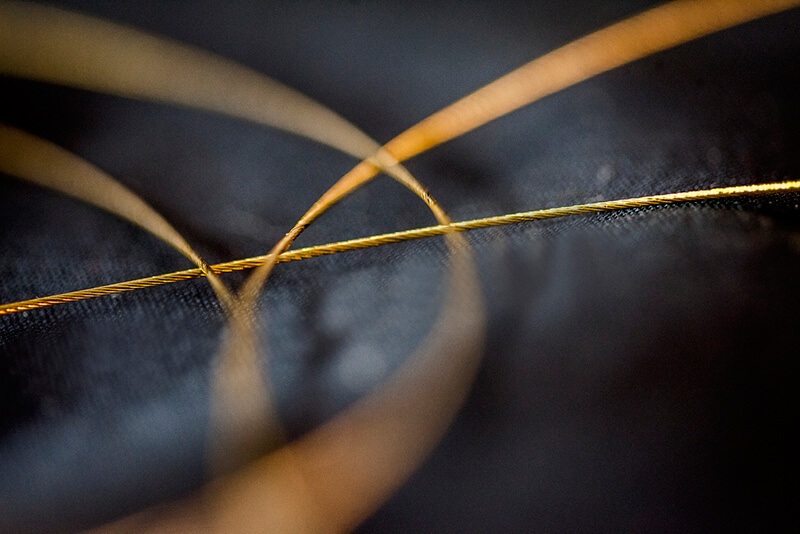 Macrophotographie - Sonny Abesamis