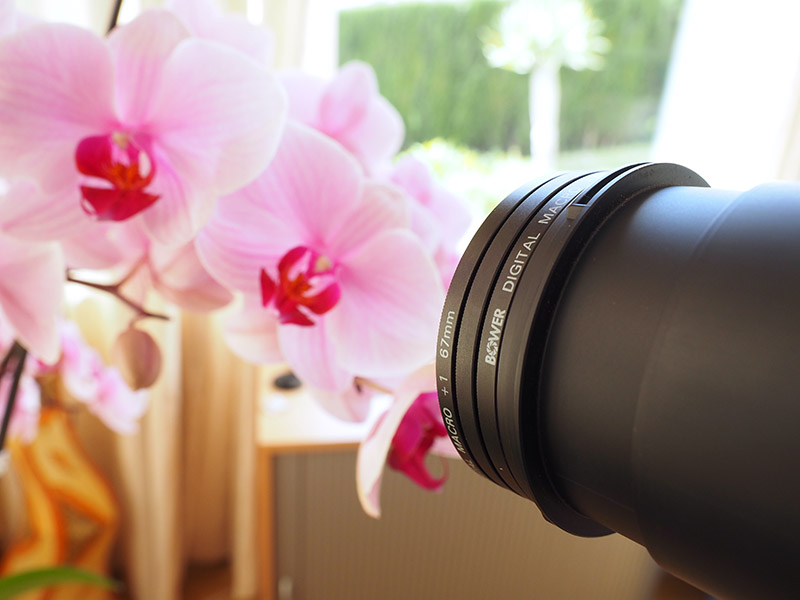 Filtres close-up : la macrophotographie avec des lentilles de rapprochement