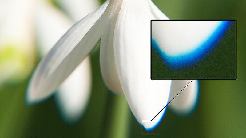 Aberraciones cromáticas: qué son y cómo se corrigen - Foto24