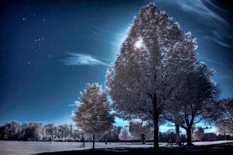 Fotografía infrarroja de noche