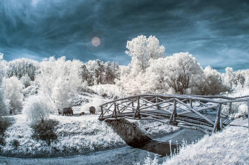 Fotografía infrarroja con puente de madera