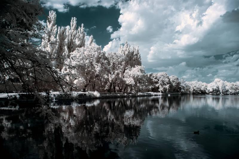 Fotografía infrarroja con filtro infrarrojo