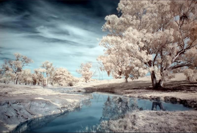 Fotografía de campo con filtro IR