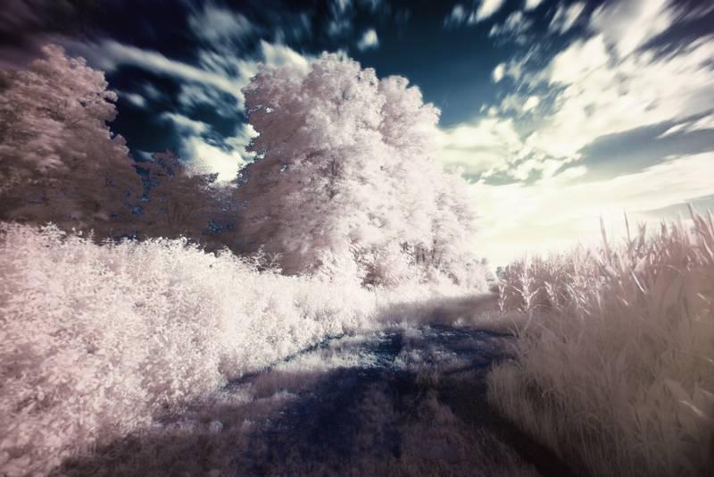 Captura también el movimiento de las nubes