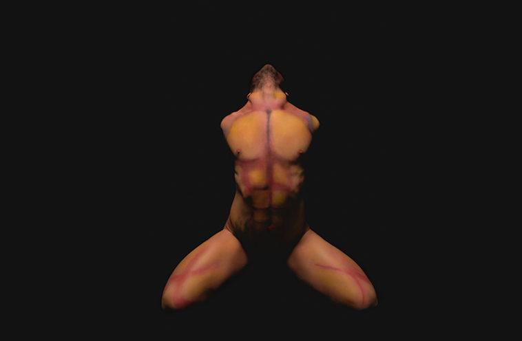 Fotografía de desnudo