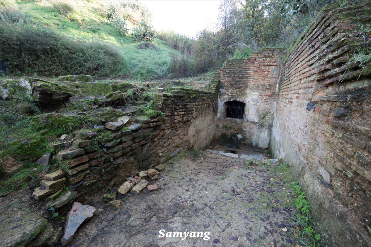 Resolución de Samyang 14mm