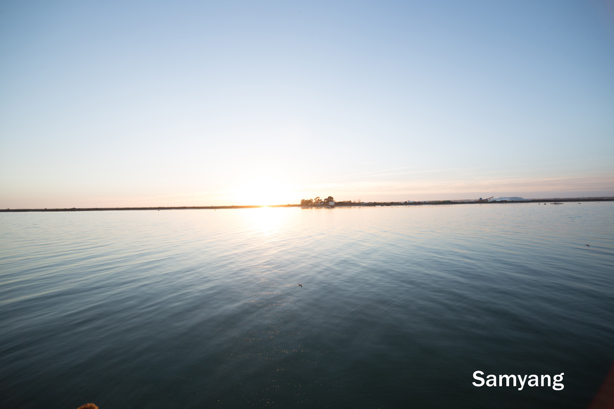 Samyang 14mm focal length