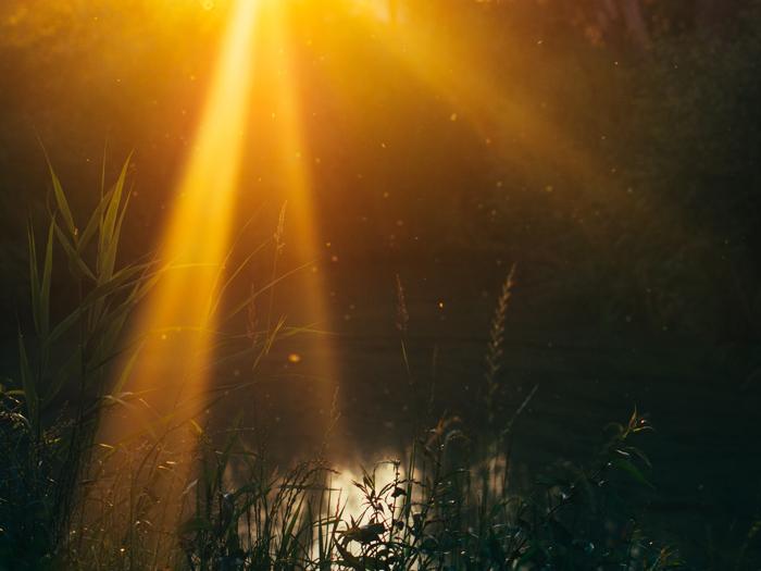 Lumière naturelle : comment photographier en fonction de l'heure de la journée