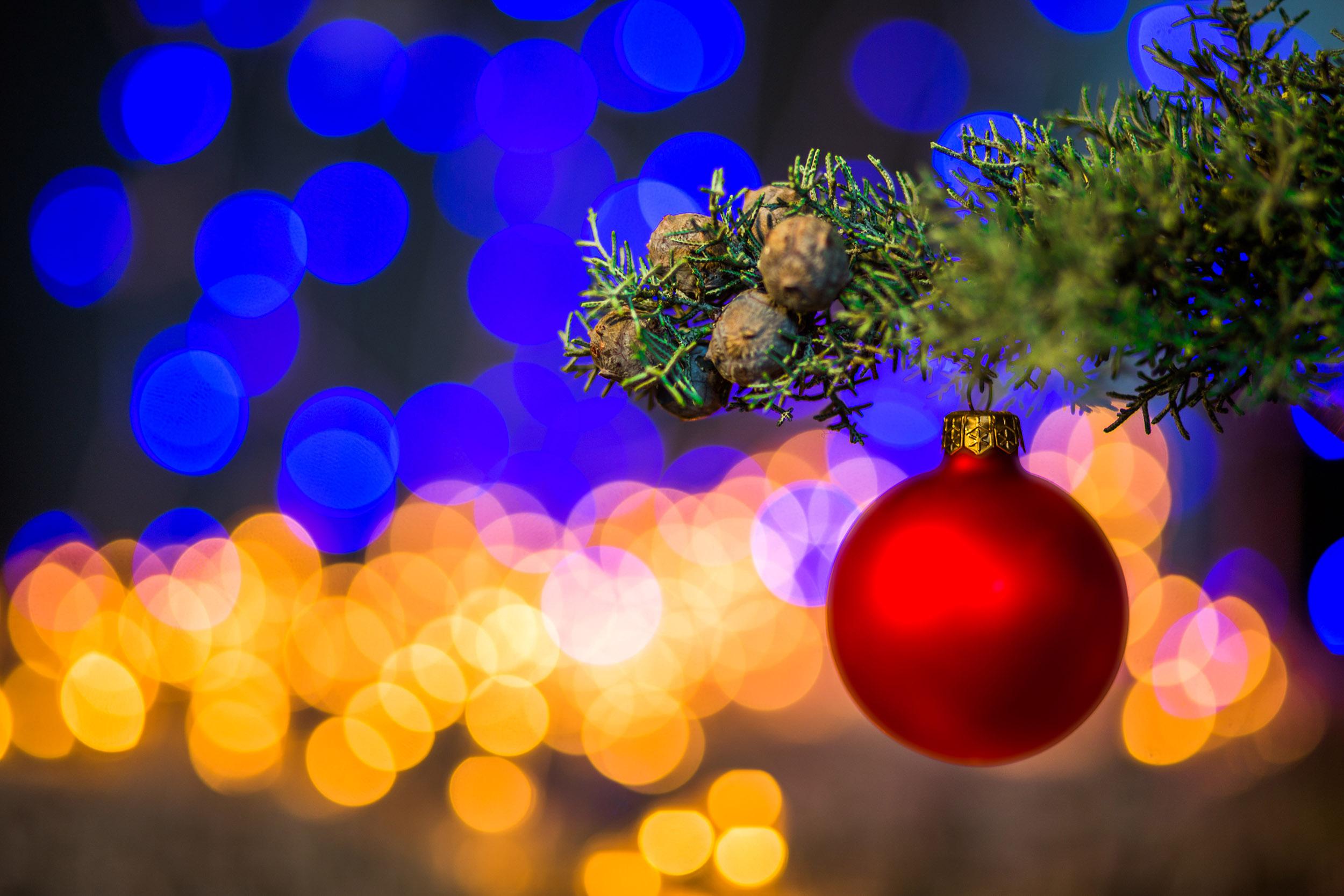 Fotografiar árbol de Navidad con fondo desenfocado