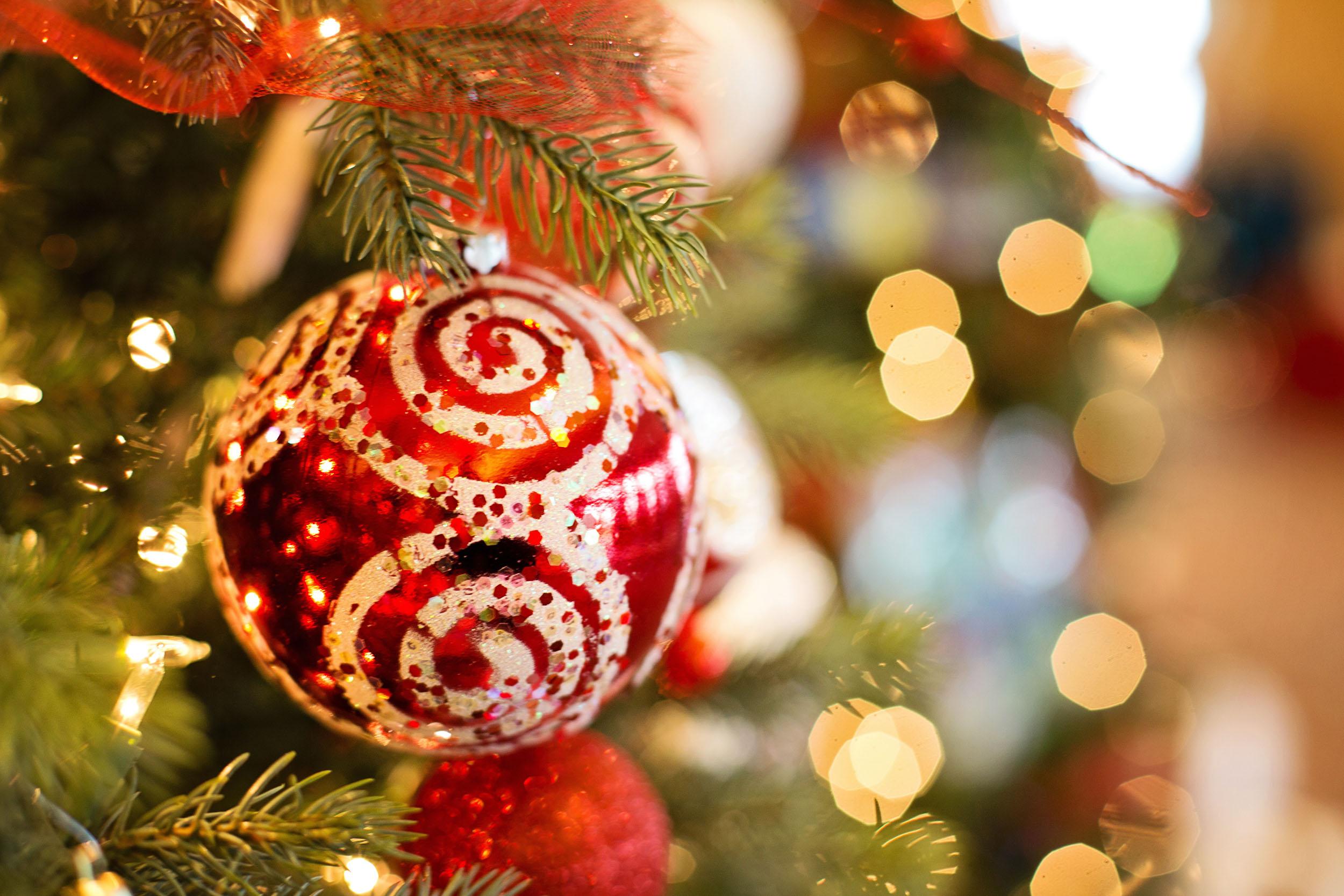 Photographier un sapin de Noël à l'aide d'un trépied