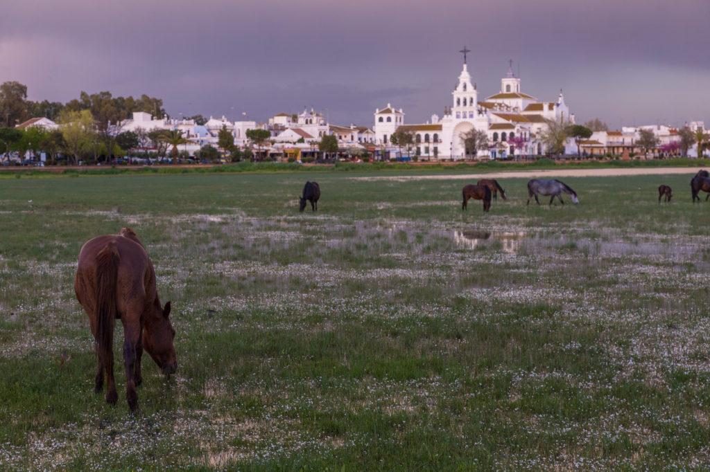 Teleobjetivo en fotografía de paisajes: Fotografía de El Rocío con tele