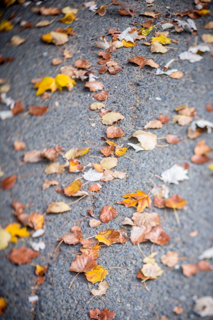 Teleobjetivo en fotografía de paisajes: Usando el asfalto como lienzo