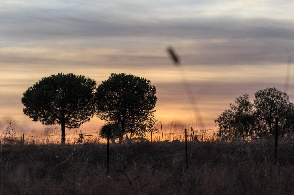 Teleobjetivo en fotografía de paisajes: Puesta de sol
