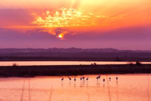 10 motivos para usar un teleobjetivo en fotografía de paisaje