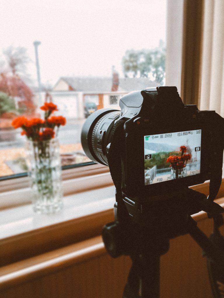 Enfoque automático para conseguir fotografías de flores nítidas