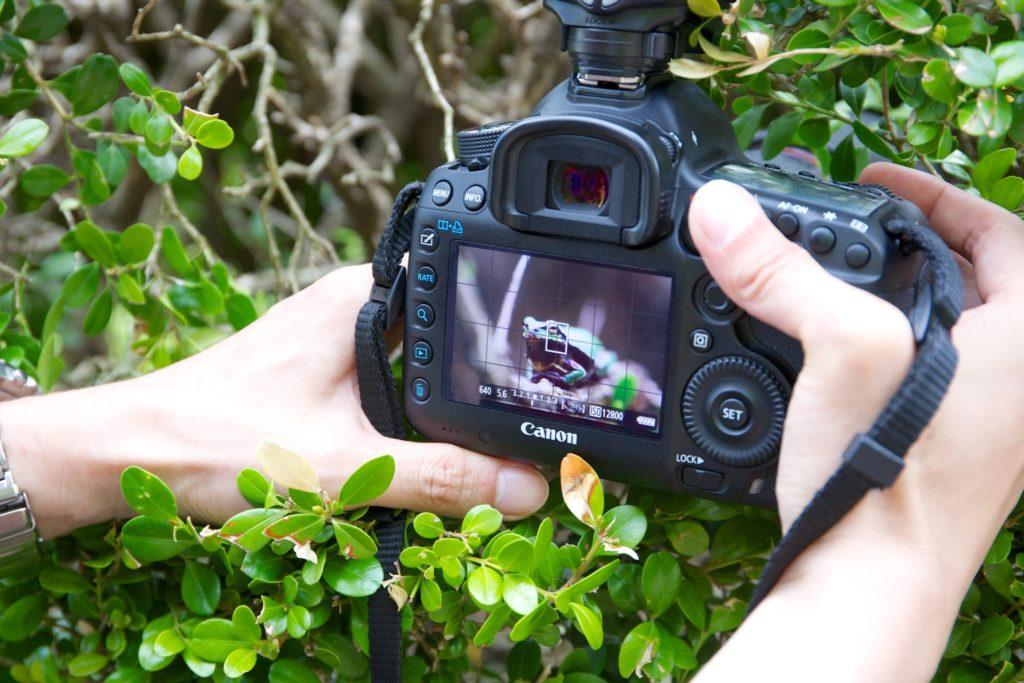 Enfoque automático para conseguir fotografías nítidas