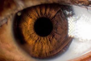 Fotos de ojos impresionantes en 6 pasos