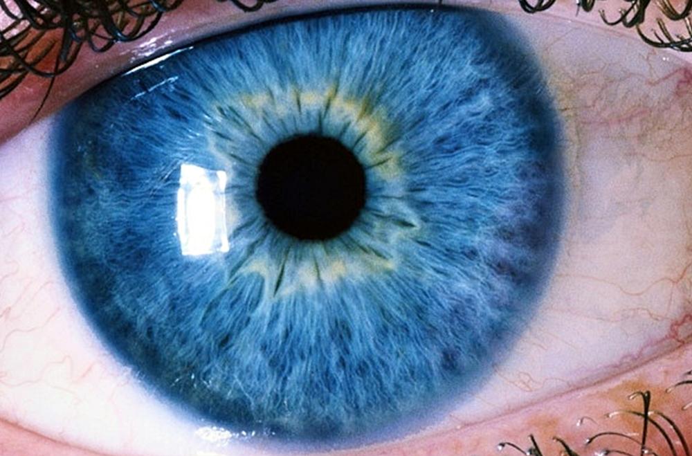 fotos de ojos increíbles
