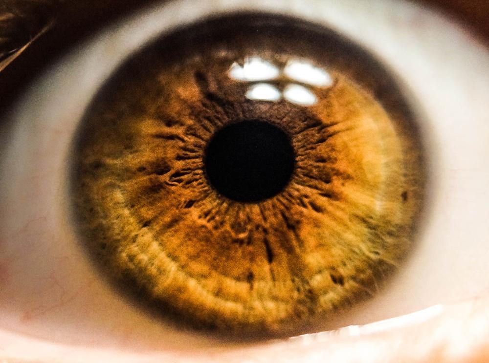 conseguir fotos de ojos profesionales