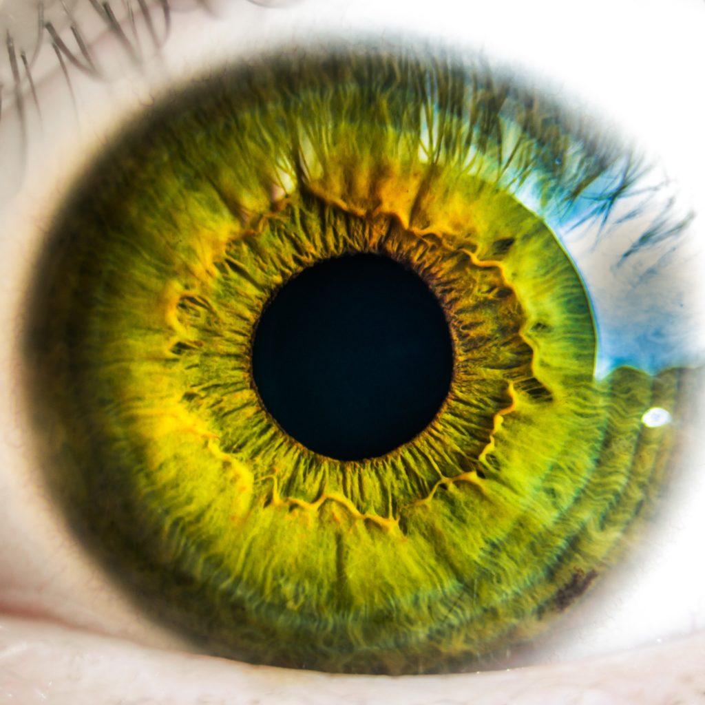 Fotografías macro de ojos