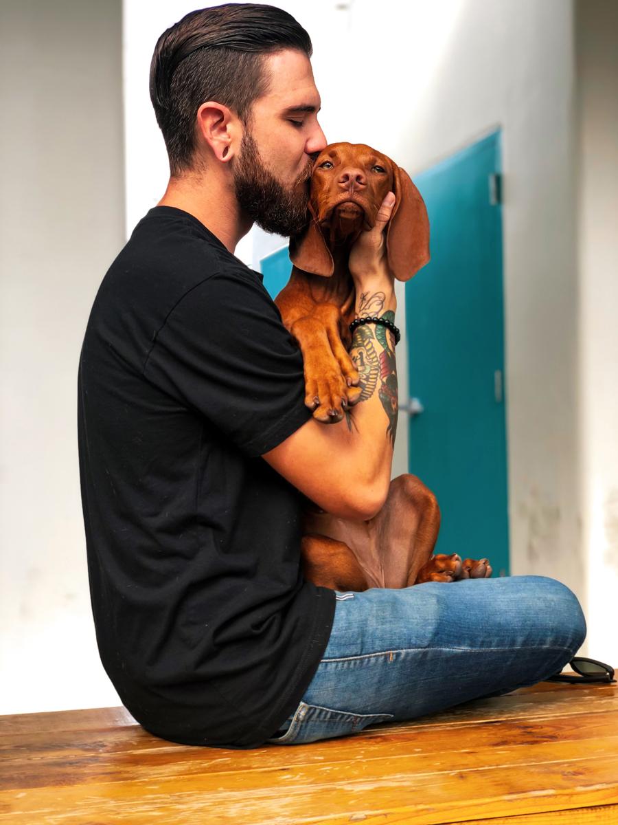Un baiser à votre animal de compagnie