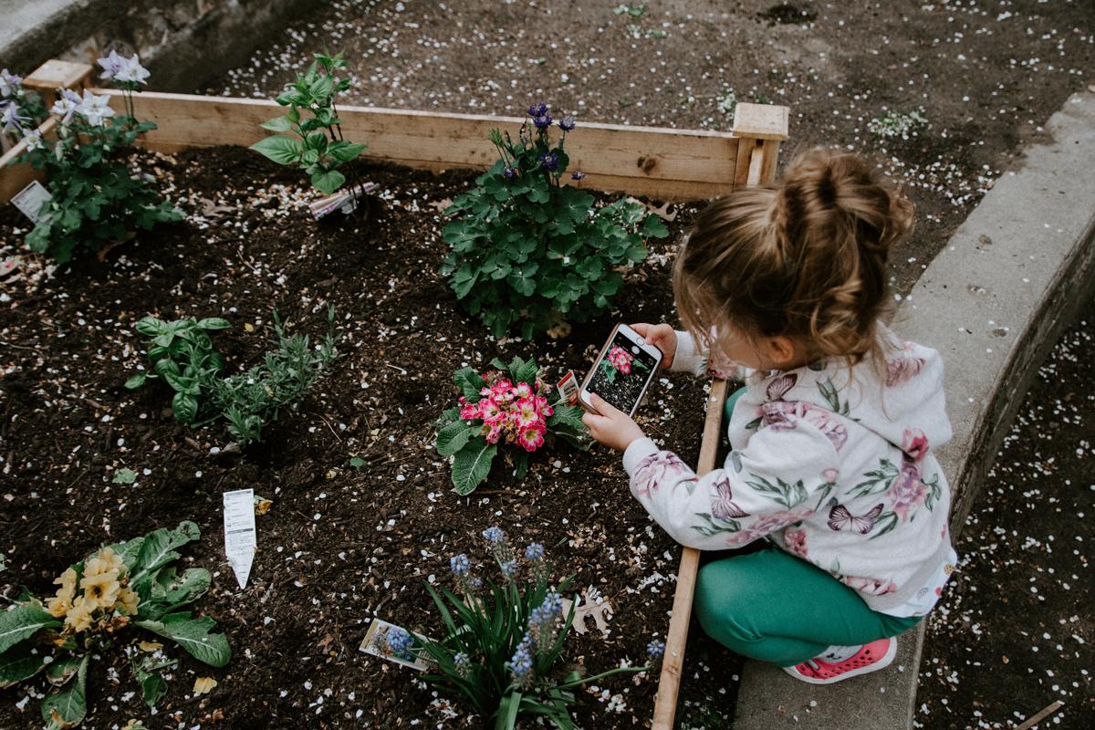Con la fotografia para niños puedes enseñarle conceptos básicos