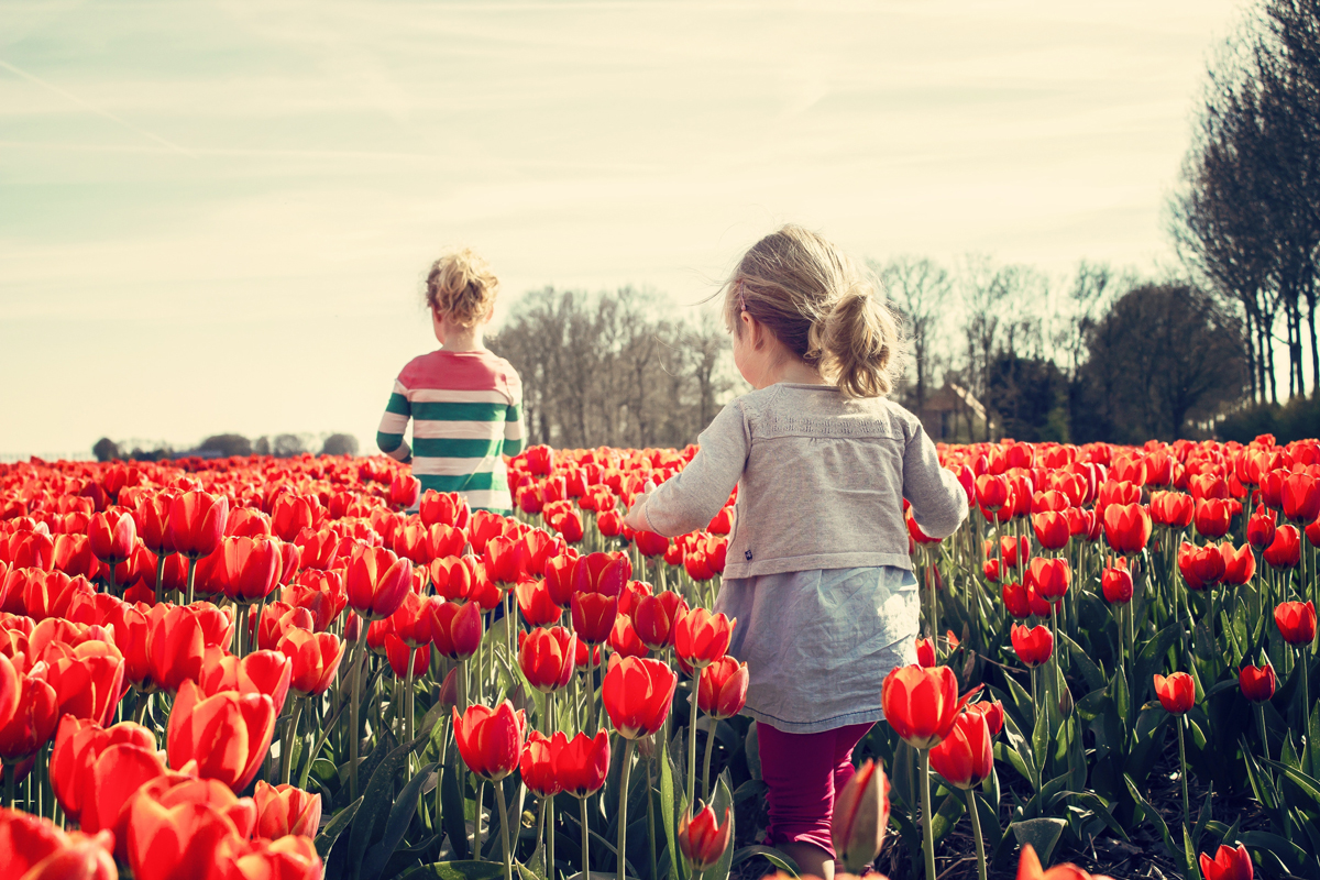 Au printemps, n'oubliez pas de faire des portraits
