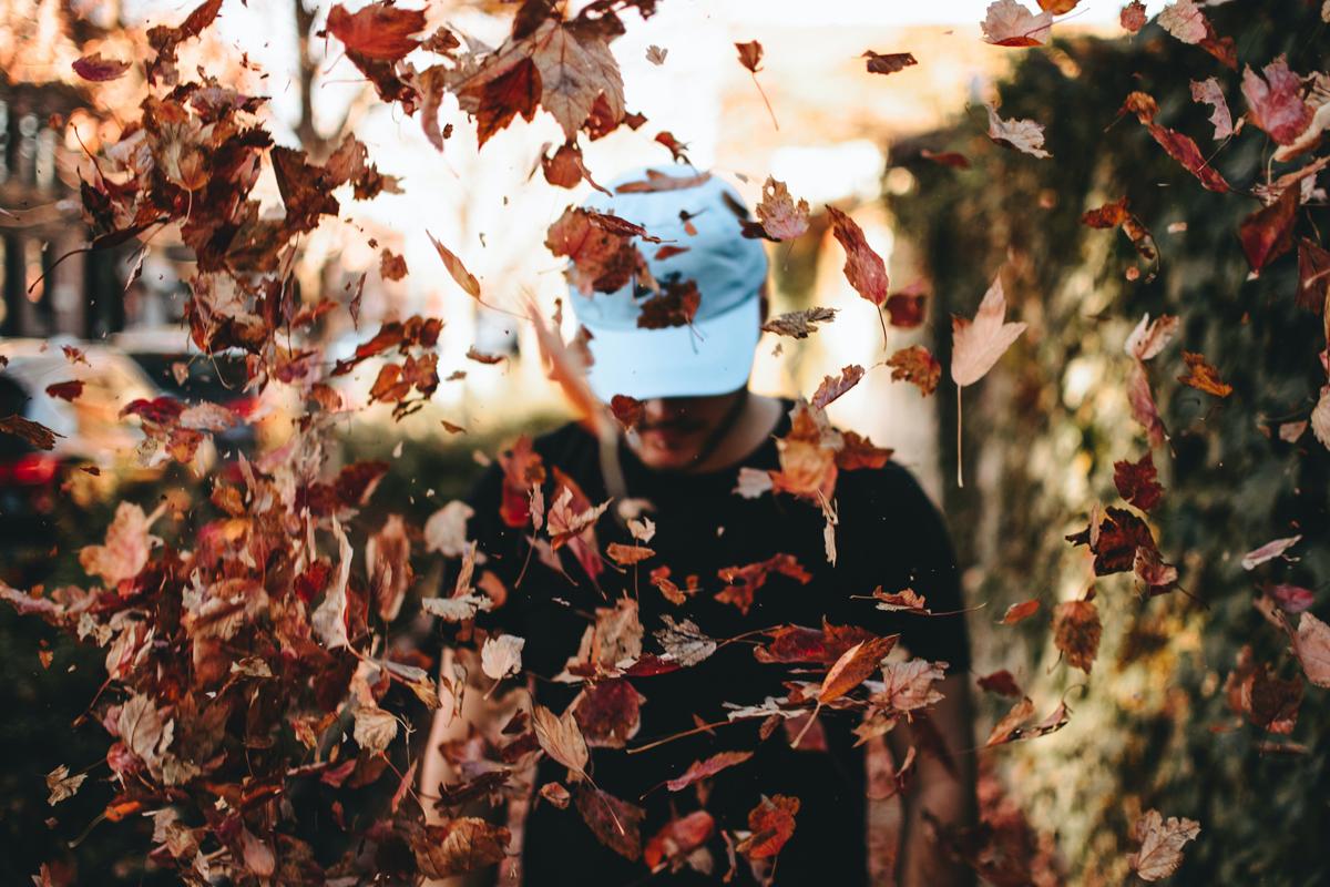 Idées créatives pour photographier l'automne : faites la mise au point sur les feuilles