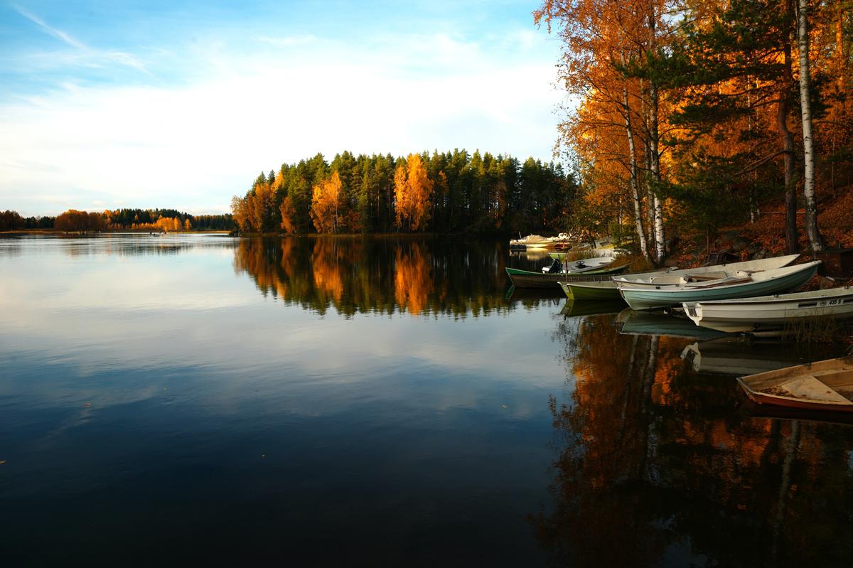 Idées créatives pour photographier l'automne : jouez sur les reflets