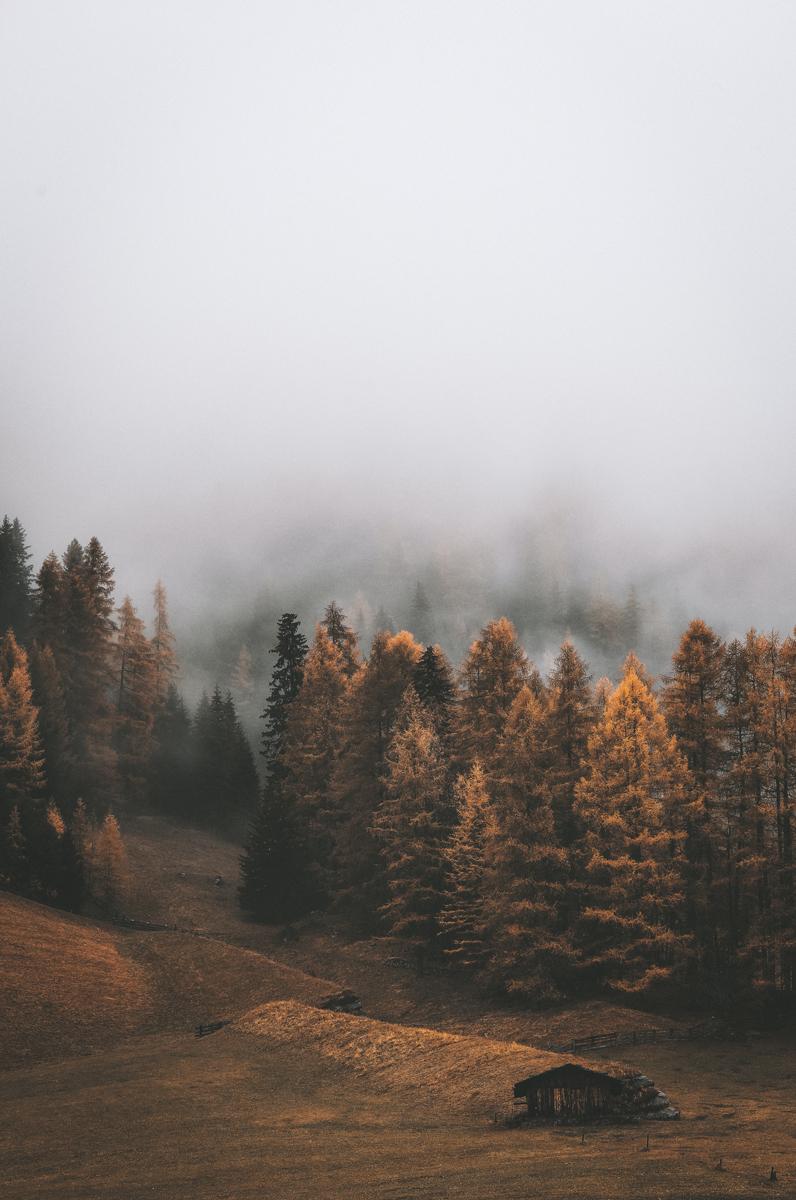 No te olivides de retocar tus fotografías de niebla