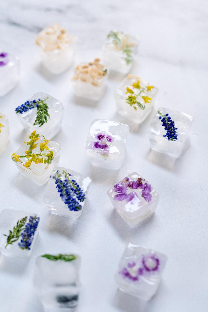 Comment photographier des fleurs congelées ? Congelez les fleurs dans des glaçons