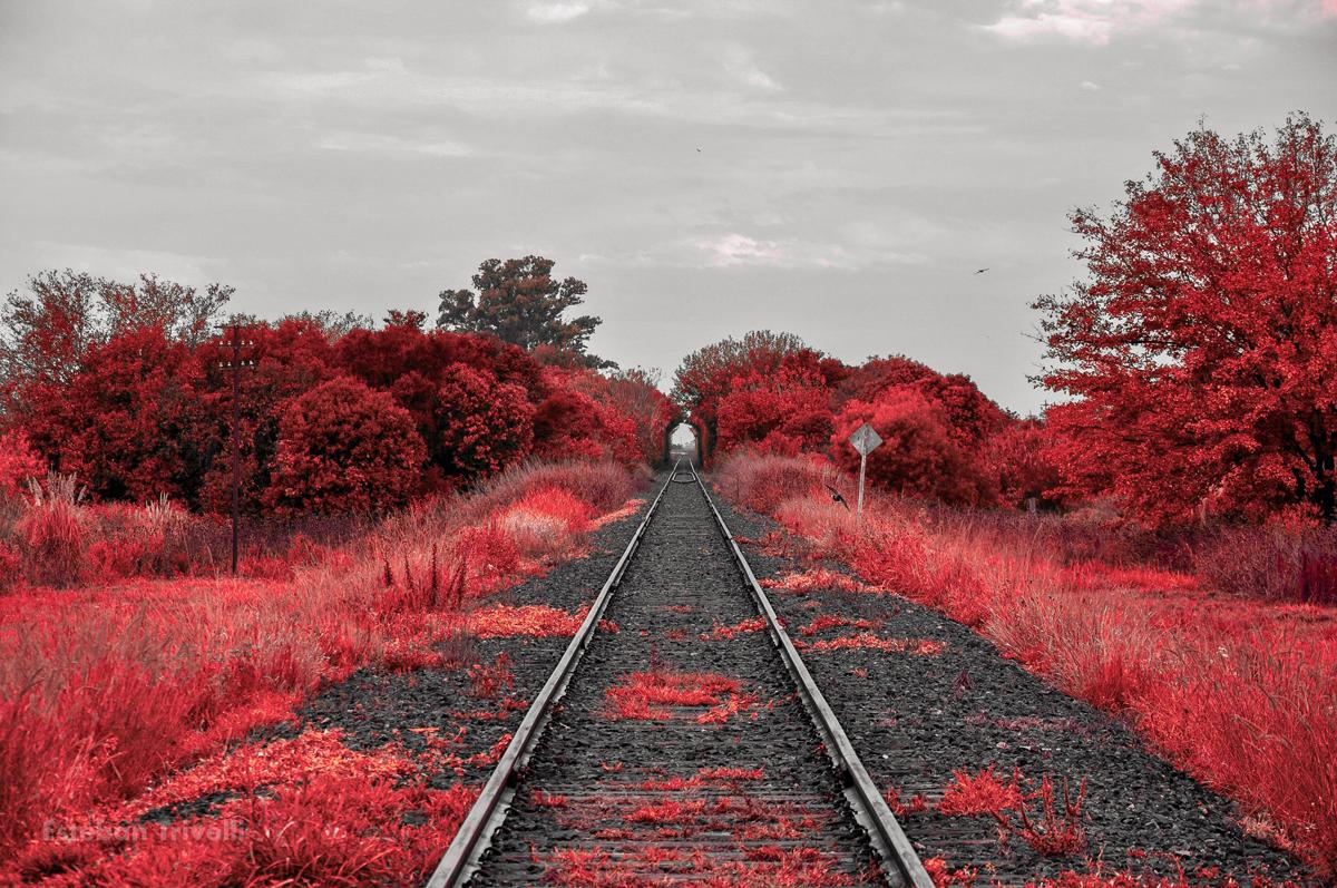 Las vias del tren son un ejemplo ideal de punto de fuga